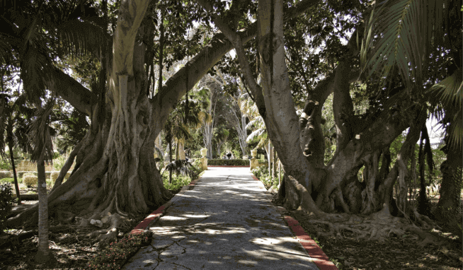 San Anton Gardens, Mdina & Rabat Tour